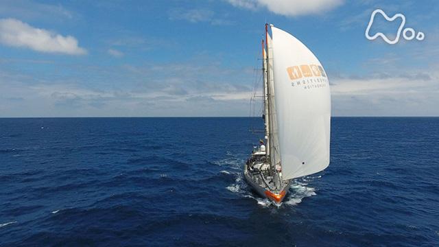 海洋アドベンチャー タラ号の大冒険2 動画