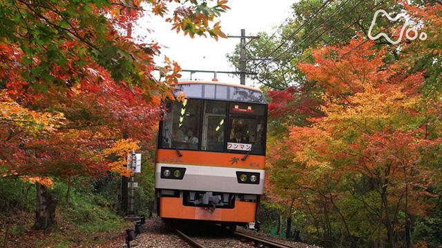 ニッポンぶらり鉄道旅 動画