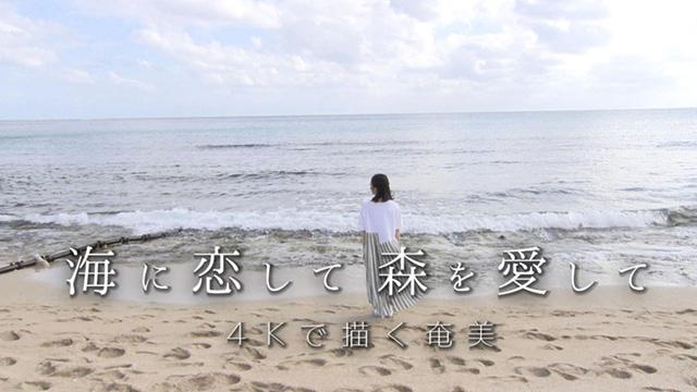 海に恋して 森を愛して~4Kで描くAMAMI~ 動画