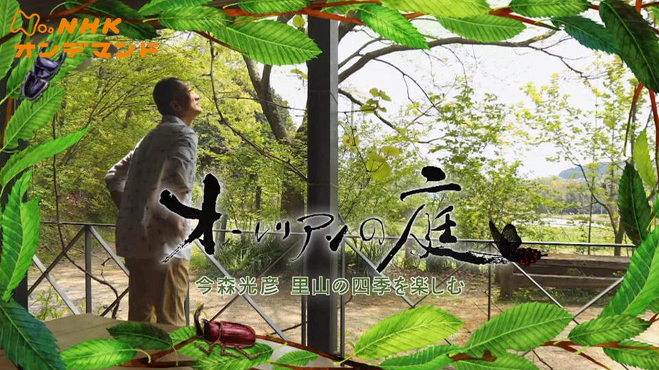 オーレリアンの庭 -今森光彦 里山の四季を楽しむ- 動画