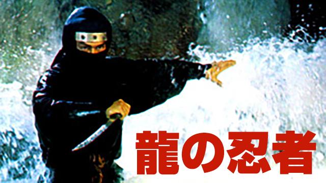 龍の忍者 動画