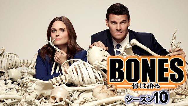 BONES/ボーンズ シーズン10 動画