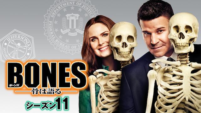 BONES/ボーンズ シーズン11 動画