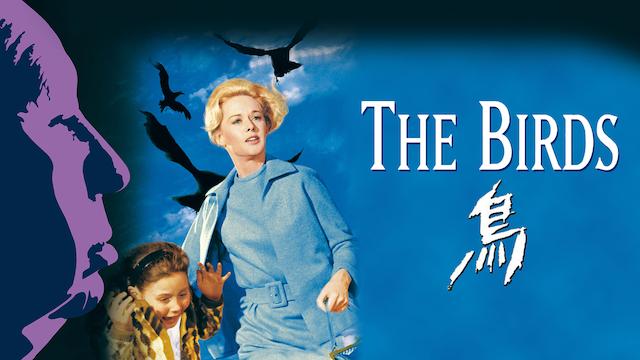 鳥/THE BIRDS 動画