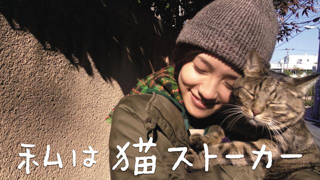 ブランケットキャット動画1話