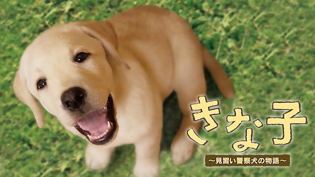 きな子〜見習い警察犬の物語〜 動画