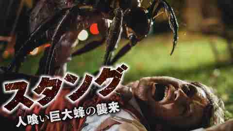 【おすすめ 洋画】スタング 人喰い巨大蜂の襲来