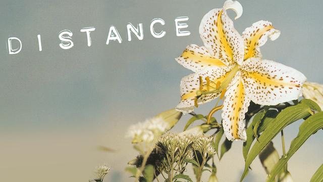 DISTANCE/ディスタンス 動画