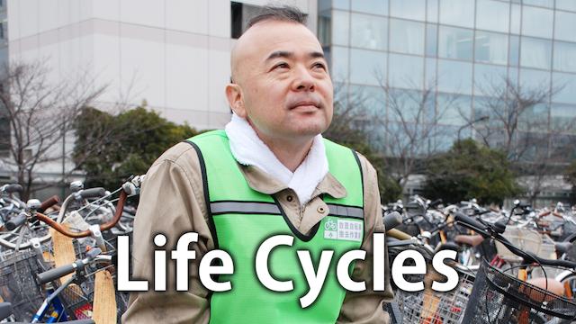 Life Cycles 動画