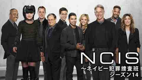【海外 ドラマ 無料】NCIS ~ネイビー犯罪捜査班 シーズン14