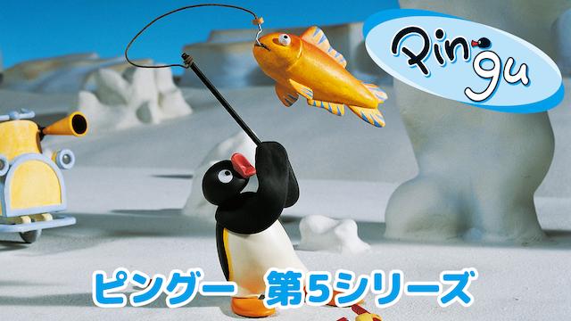 ピングー 第5シリーズ | 無料動画