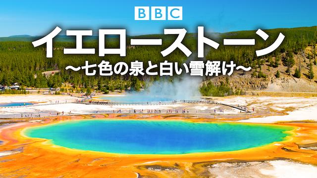 イエローストーン 〜七色の泉と白い雪解け〜 動画