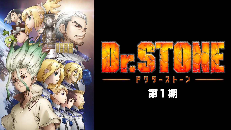 Dr.STONE 動画