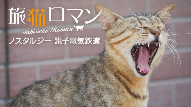 旅猫ロマン ノスタルジー 銚子電気鉄道の動画 - 旅猫ロマン 新潟県関川村 猫ちぐらの里
