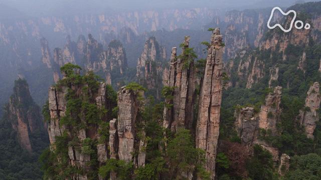 絶景 巨大石柱林~中国・張家界を鳥観する~