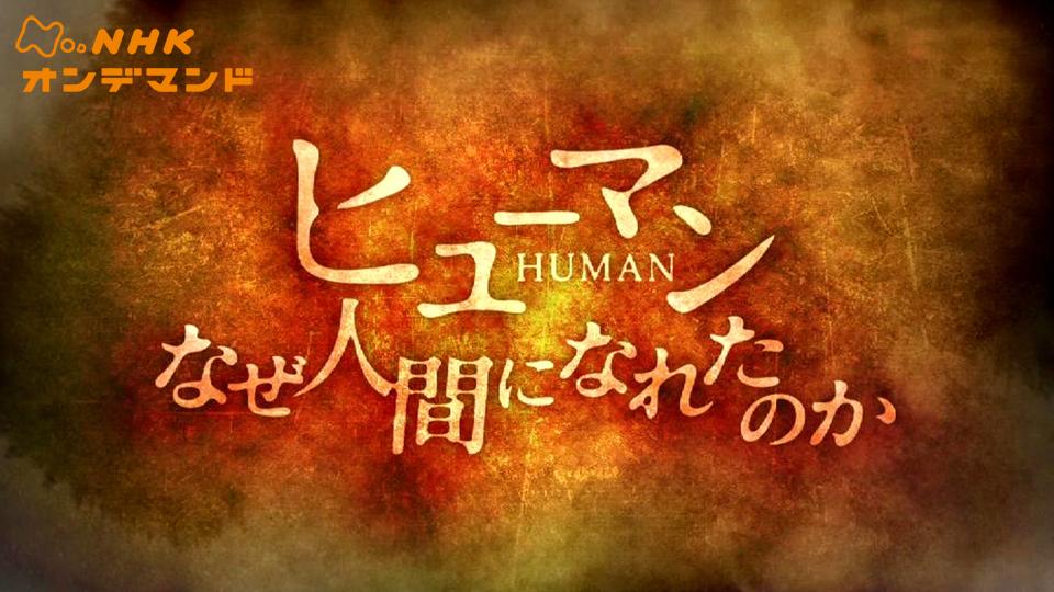 ヒューマン なぜ人間になれたのか