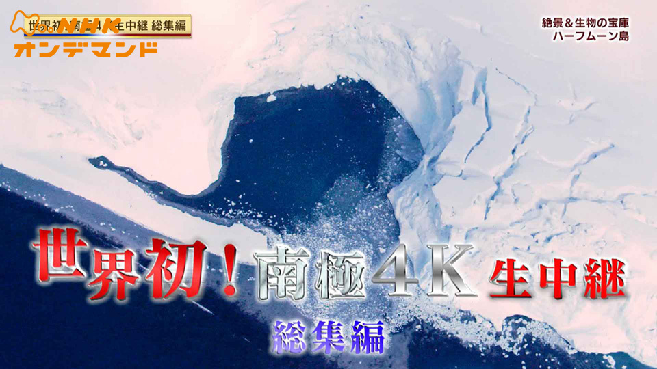 南極4K生中継