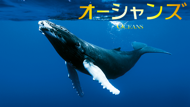 オーシャンズ|映画無料視聴フル動画!海の神秘と壮大なストーリー