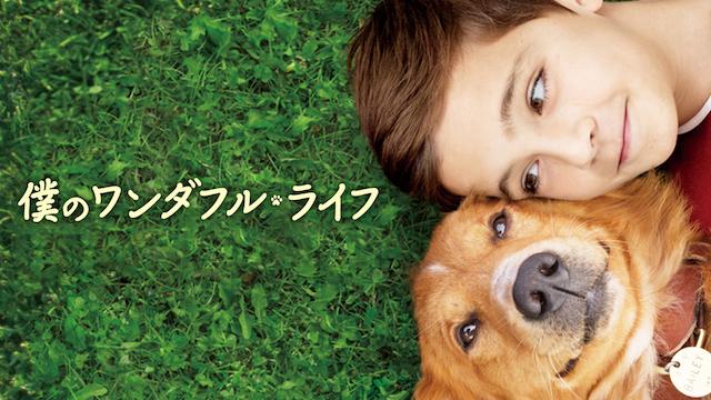 僕のワンダフルライフ 映画無料視聴フル動画(字幕/吹替)!脱Pandora/Dailymotion!