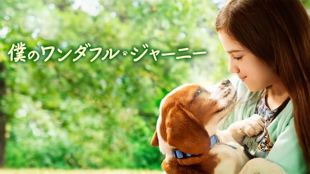 僕のワンダフルジャーニー|映画無料視聴フル動画!脱Pandora/Dailymotion!