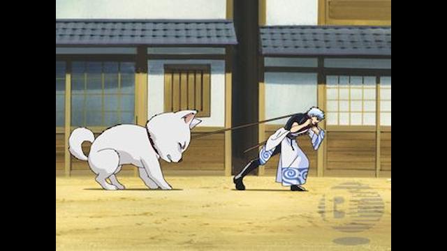 銀魂. 第1期 第15話 飼い主とペットは似る