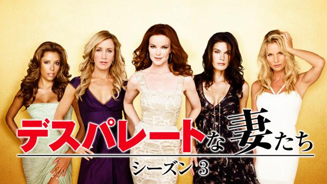 デスパレートな妻たち シーズン3 第4話 巻き戻せない時間フル動画
