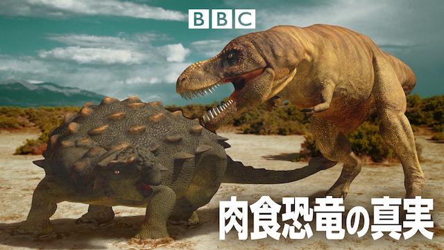 肉食恐竜の真実