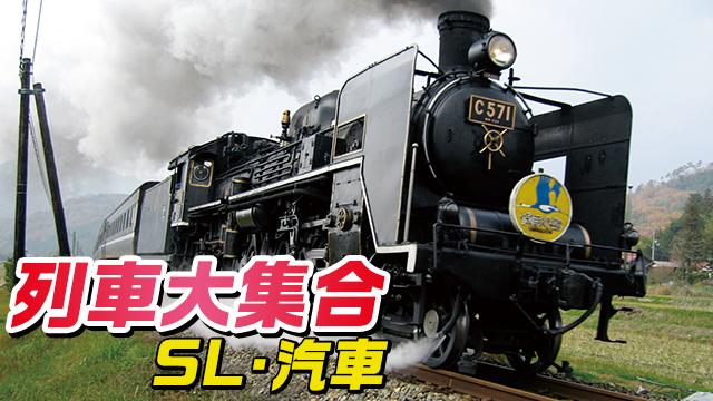列車大集合/SL・汽車