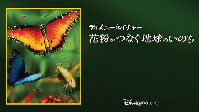 ディズニーネイチャー/花粉がつなぐ地球のいのち
