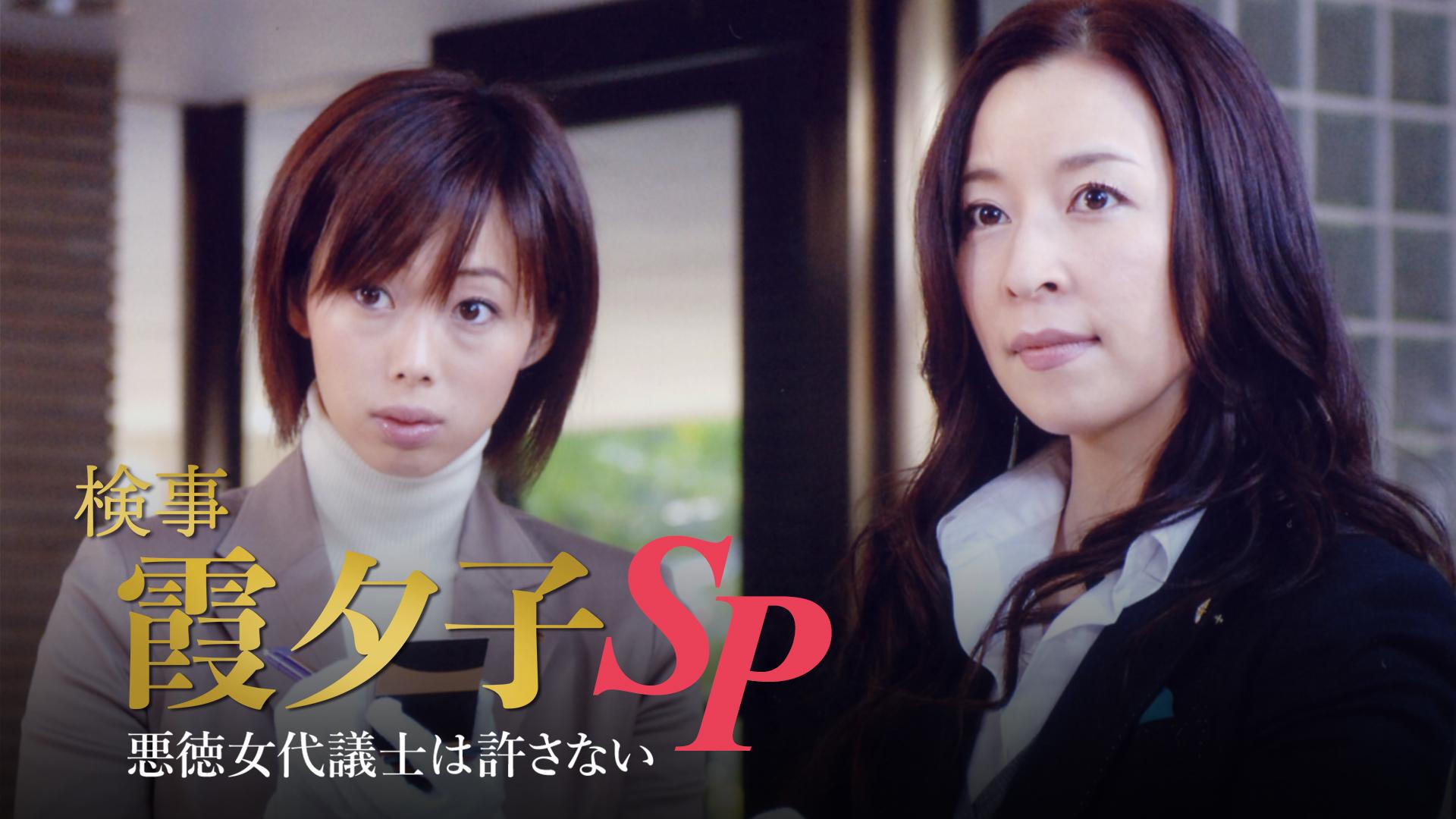検事 霞夕子SP 「悪徳代議士は許さない」
