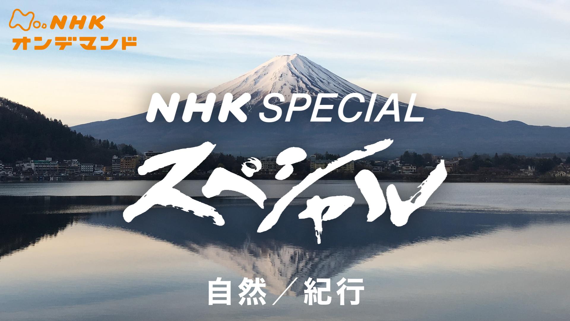 Nスペ 自然/紀行