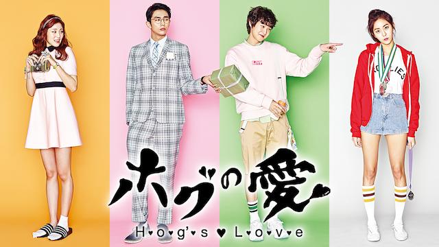 ホグの愛 第12話フル動画