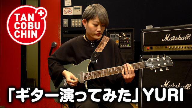 たんこぶちん「ギター演ってみた」/YURI