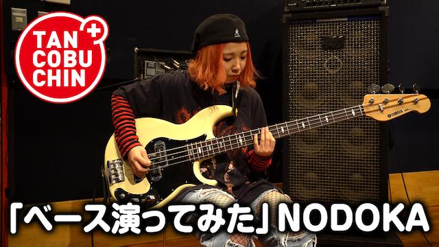 たんこぶちん「ベース演ってみた」/NODOKA