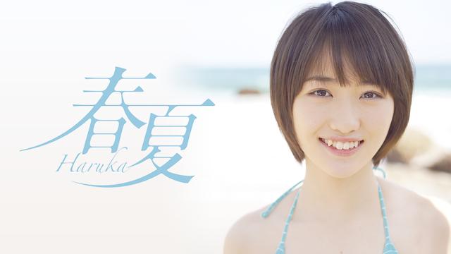 春夏-Haruka-