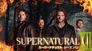 SUPERNATURAL シーズン12