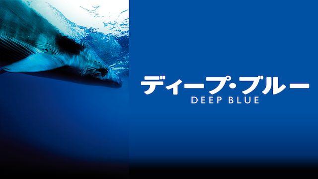 ディープ・ブルー(2003年・イギリス)