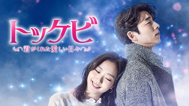 トッケビ〜君がくれた愛しい日々〜動画を無料視聴
