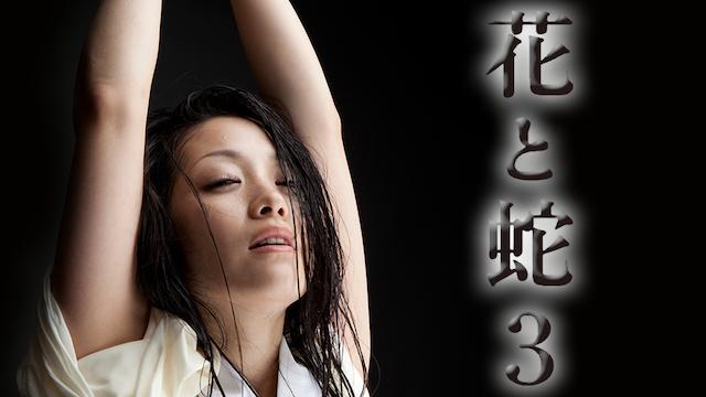 小向美奈子「花と蛇3」をU-NEXTで無料で見る
