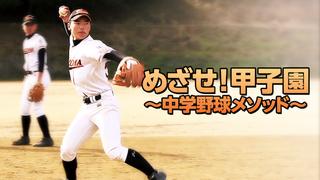 めざせ!甲子園~中学野球メソッド~