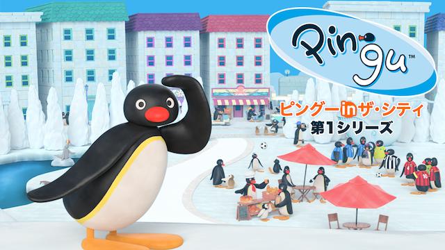 ピングー in ザ・シティ 第1シリーズ #9 ペンギンの本能の画像