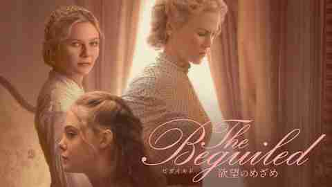 The Beguiled ビガイルド 欲望のめざめのサムネイル
