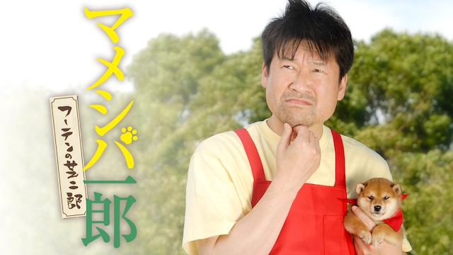 マメシバ一郎 フーテンの芝二郎
