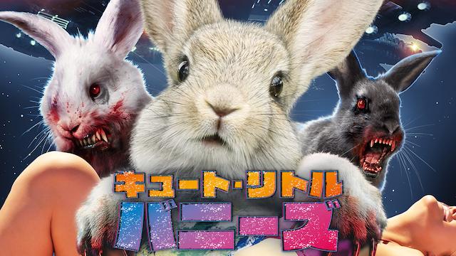 キュート・リトル・バニーズ動画フル