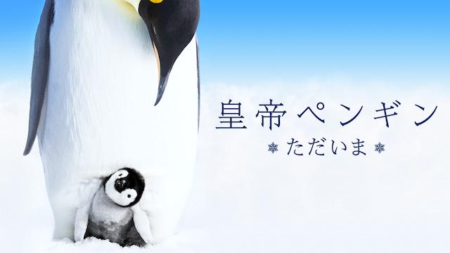 皇帝ペンギン ただいまの画像