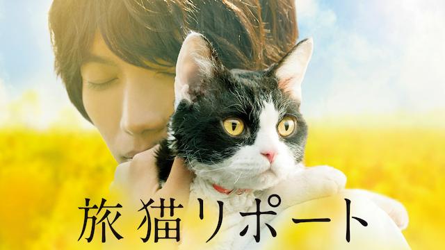 旅猫リポート無料動画