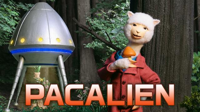 PACALIENの画像