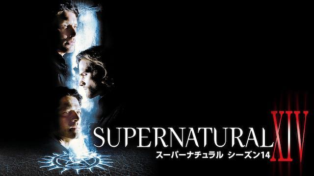 SUPERNATURAL シーズン14