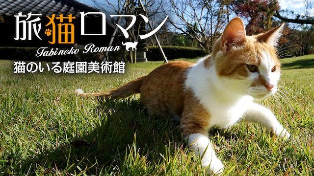 猫のいる庭園美術館