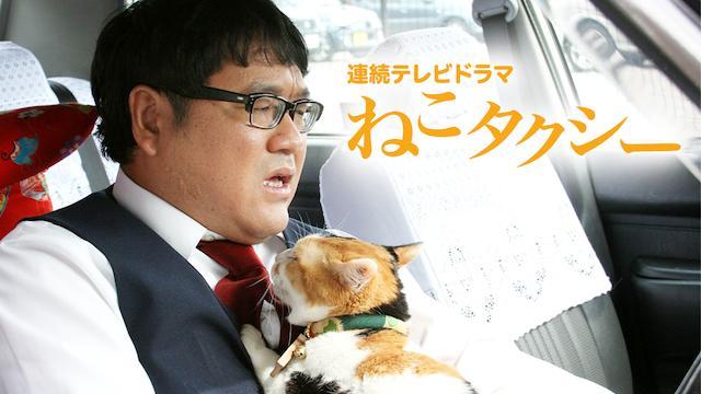 連続テレビドラマ ねこタクシー